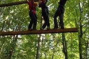 Giant ladder