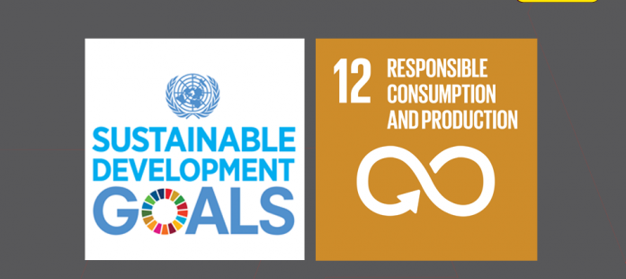 SDG series | SDG 12: Responsible consumption and production
