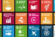 SDGs_DE