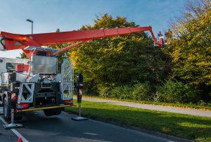 PALFINGER Hubarbeitsbühnen bringen Innovation in Sachen Baumpflege